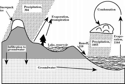 view Rockglaciers: Indicators for the Present and Former Geoecology in